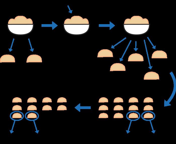 Flowdiagram: Efter at dejen har hævet tages to prøver. Den ene sættes i køleskabet og den anden bages i ovnen i 10 min. Herefter tilsættes kiwisaften. Der laves nu 12 dejprøver på hver 50 g. Hver 5 min tages to af prøverne. Den ene sættes i køleskabet og den anden bages i ovnen i 10 min.