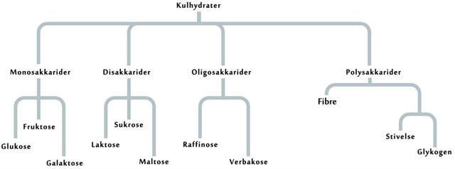komplekse kulhydrater liste