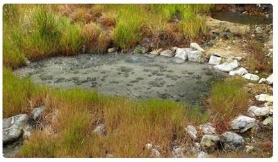 Varme søer kan indeholde ekstremofile bakterier som hyperthermofile.