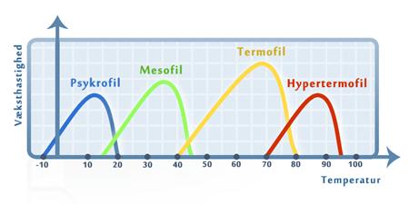 Forskellige typer af ekstremofile bakterier