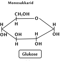 Glucose er et monosakkarid
