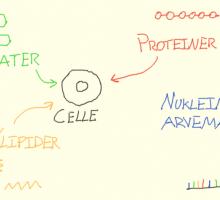 biokemi_thumbnail